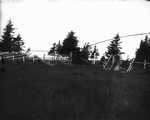 View of gate in Hall Field, ca.1890's.  Cavendish, P.E.I.
