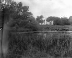 Distant view of William & Amanda MacNeill's home, ca.1897.  Cavendish, P.E.I.