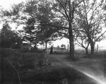 View of Aunt Mary MacNeill at gate in Webb's yard, ca.1900.  Cavendish, P.E.I.