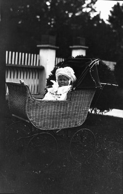 Chester in his carriage, ca.1913.  Leaskdale, ON.