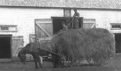 Stuart, Chester and Uncle Alex MacNeill, ca.1920.  Cavendish, P.E.I.