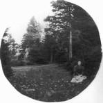 Female figure, seated, in Cavendish woods, ca.1890's.  Cavendish, P.E.I.