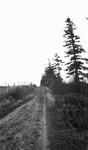 Prince Edward Island Road, P.E.I.