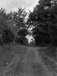 Lane way, Old Woolner house, Dunwich, England (Honeymoon, 1911)