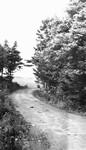 Road, Lover's Lane, P.E.I.
