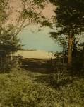 Farm of Mr. Ernest Webb, ca 1895.