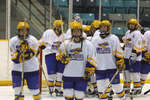 Wilfrid Laurier University women's hockey team