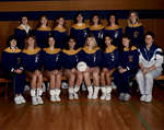 Wilfrid Laurier University women's volleyball team, 1988-1989
