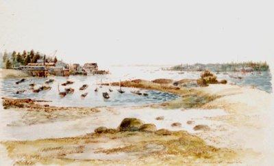 Southwest Harbour at Low Tide
