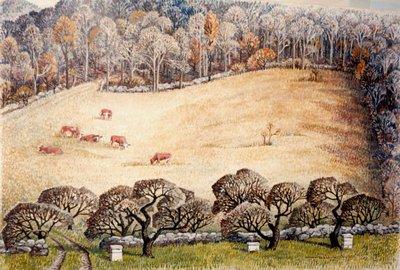Pasture in November