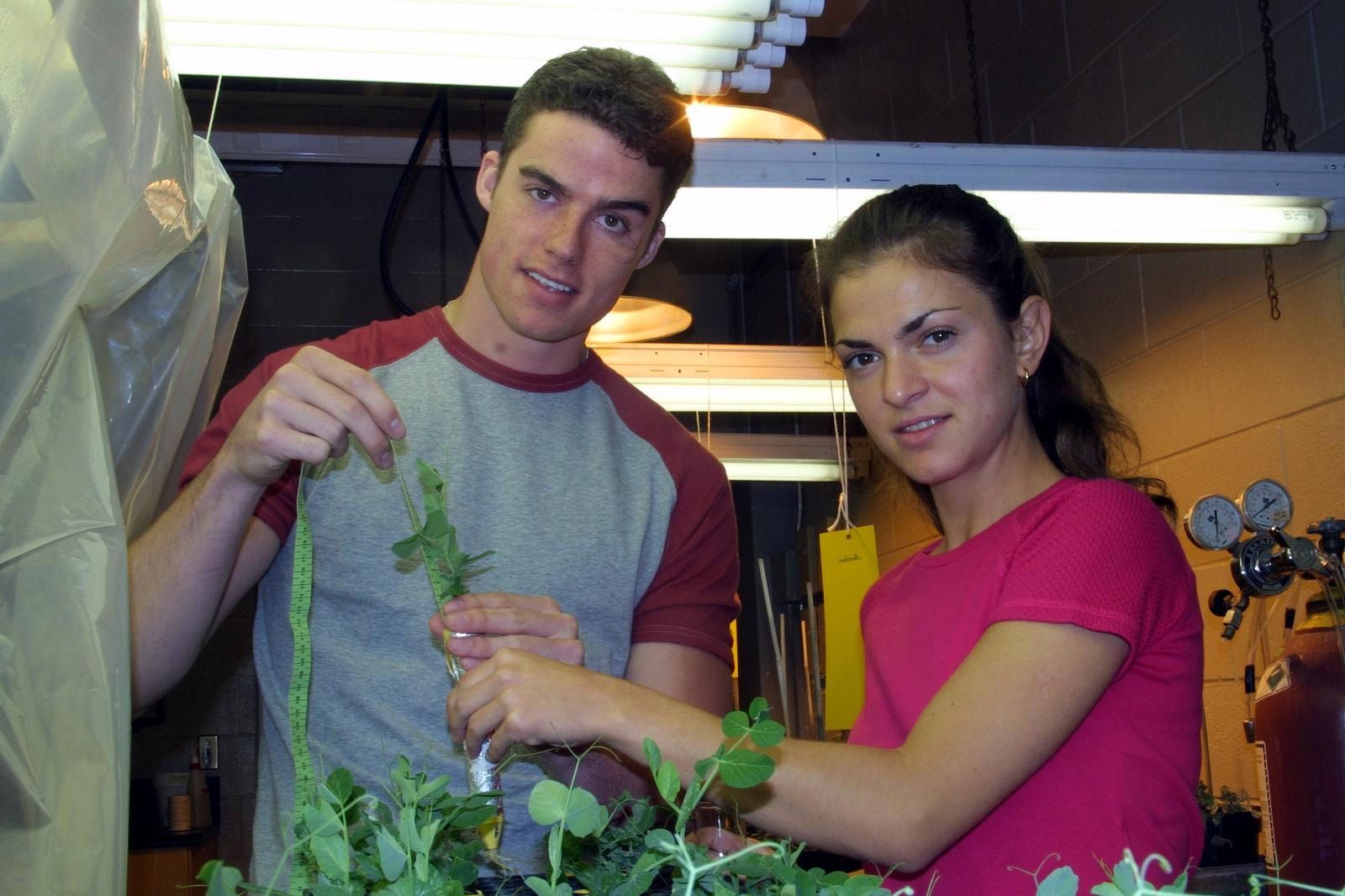 Students measuring plants in biology plant lab, 2002