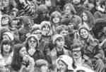 Crowd in the bleachers at Seagram Stadium, 1972