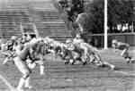 Waterloo Lutheran University Golden Hawks football game