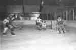 Waterloo College hockey players