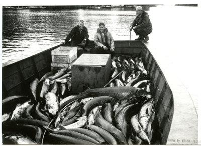 Pêcheurs / Fishermen