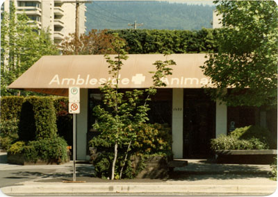 Ambleside Animal Hospital