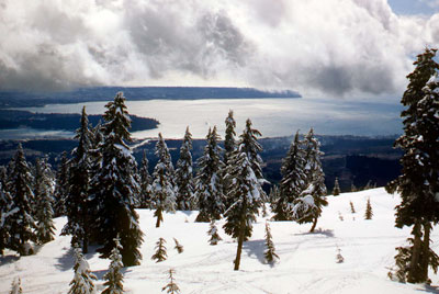 View from Hollyburn Mountain