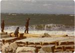 Ambleside Beach