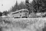 Bus no. 35