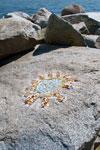 Mosaic Art Along the Seawalk