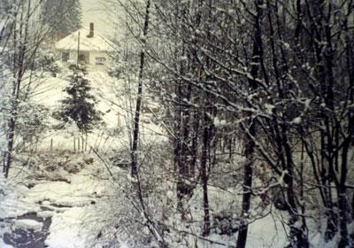 West Vancouver Snow Scene