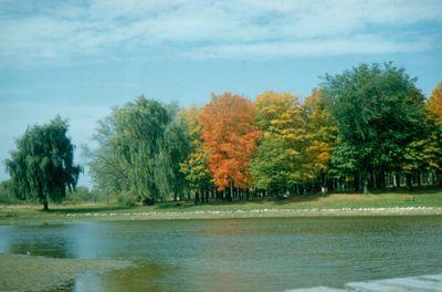 Autumn in Waterloo Park, Silver Lake