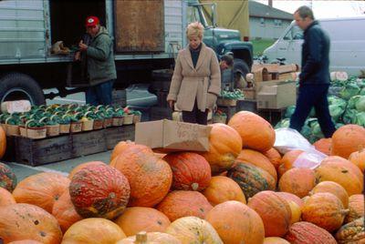 Waterloo County Farmers' Market, Squash Vendor