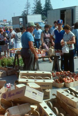 Waterloo County Farmers' Market, Empty Crates