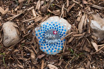 """""""Stay Healthy"""" Painted Rock"""