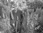 Arthur Wellesley Lynde, 1946