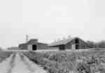 Farm Buildings, Ontario Hospital Whitby, c.1923