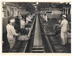 Shell Filling Department, Defence Industries Ltd. Ajax