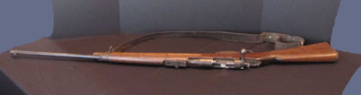 Rifle with strap