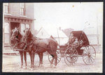 Horse and Buggy in Lyndhurst, ON
