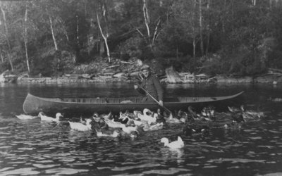 Canoeing with ducks on Indian Lake