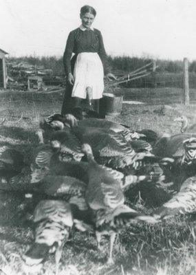Jessie Preston tending turkeys
