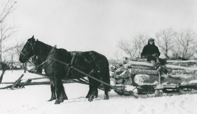 James Carty bringing logs from north shore of Big Rideau Lake