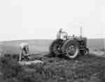 Digging fence holes at the Fred Prentiss & Sons farm, Assiniboia, Saskatchewan.