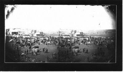 View of cattle fair, Hallis House, Henderson Street, Elora.