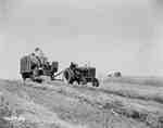 Harvesting, Agincourt, ON