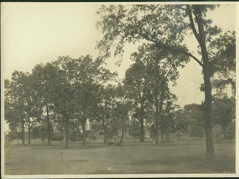 2929 Sheridan Rd., [336 Sheridan Rd.] Wilmette, seen through trees.