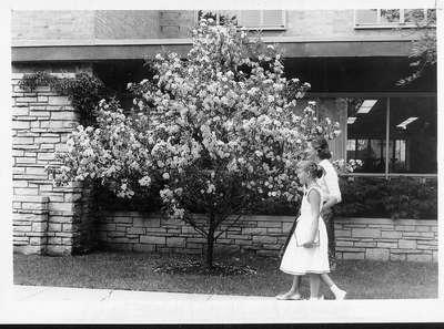 Wilmette Public Library 1959