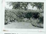 Wilmette Public Library Memorial Garden 1950s No.23